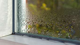 When to repair or replace your windows