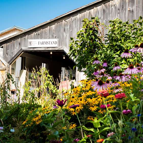 The entrance to the farmstand at Jericho Settler's farm