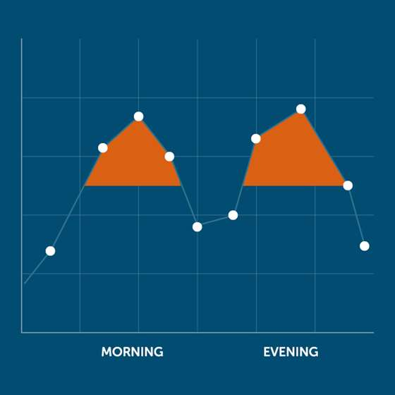 A chart demonstrating a morning and an evening peak demand period