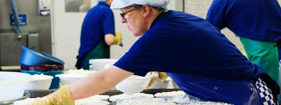 Image of worker at a dairy processing facility