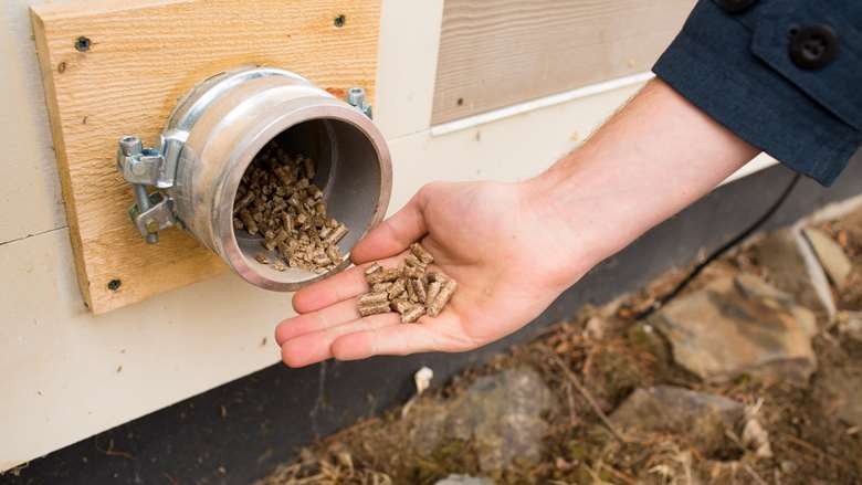Photo of a hand holding wood pellets