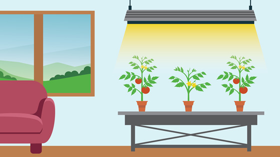 What is an LED grow light?