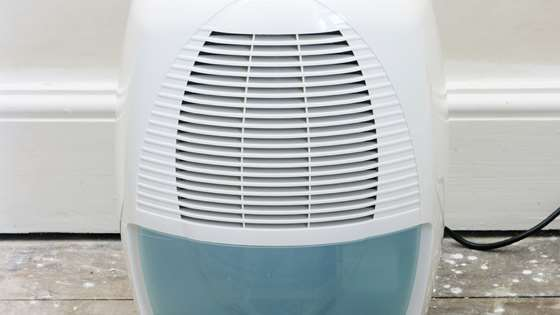 Turn down your dehumidifier